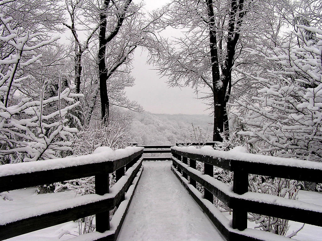 creditlukestorms.compath-of-snow